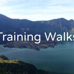 Training Walks